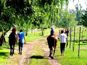 Willow-Express-horse-riding